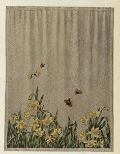 Curtains a Hundred YearsAgo. Source: Ladies Home Journal (July, 1913)
