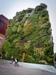 Vertical garden contiguous to art gallery CaixaForum — Jardin vertical accolé à la galerie d'art CaixaForum (Madrid) - Garten www.