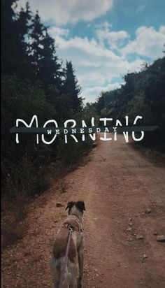 morning for insta story Instagram And Snapchat, Instagram Story Ideas, Instagram Posts, Instagram Legal, Best Instagram Stories, Friends Instagram, Insta Posts, Creative Instagram Photo Ideas, Insta Photo Ideas