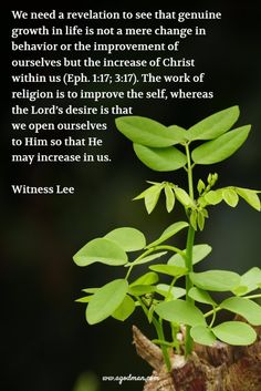 Spiritual progress and the growth in life is the increase of Christ within us; when Christ increases while we decrease, we grow with the growth of God for the building up of the church. But if there's no increase of Christ in us day after day, we stagnate in our growth in life, and the…