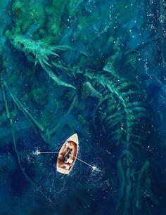 """Dragon Bones by artist Stefan Koidl. Check more at website. "" ""Dragon Bones by artist Stefan Koidl. Dragon Bones, Digital Draw, Arte Horror, Horror Art, Horror Movies, Fantasy Landscape, Fantasy Artwork, Fantasy Drawings, Fantasy World"