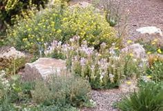 Ornamental Pond & Garden Experts: Stone Landscaping: Stones Uses (Part I)
