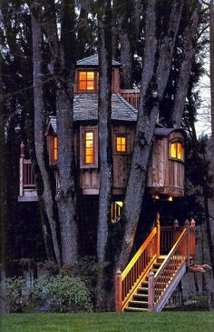 tree houses for adults | Tree houses for adults #10 (the one pictured) would love to see the inside
