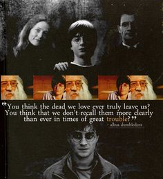 """Harry Potter :'( Stahp it!!! You're making my heart hurt!!!! Literally!!!!! """"Oh, to be young and to feel loves keen sting."""" -Albus Dumbledore :'("""
