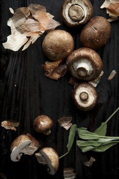 Mushrooms from the Vale No.54 of the Food of Westeros series