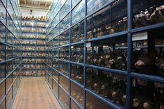 The visible storage rooms at the Museo Larco in Lima
