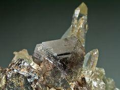 マンガン斧石(Manganaxinite)     宮崎県西臼杵郡日之影町小八重 Ca2Mn2+Al2BO(OH)(Si2O7)2 画像の幅約1.7cm、3.1cm  斧のような形状をした黒色の結晶がマンガン斧石です。 透明な水晶と共に美しいマンガン斧石の結晶が観察できます。