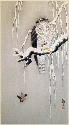 Ohara Koson (1877-1945): Goshawk and Sparrow in Snow