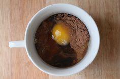 Chocolate Paleo Mug Cake Recipe