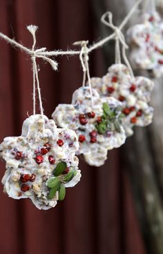 Birdboard and tallow seed mix: do it yourself and feed the birds right - Kotiliesi. Kids Christmas, White Christmas, Christmas Crafts, Xmas, Tis The Season, Diy Projects, Birds, Sweet, Gardening