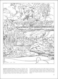 Nature Coloring Pages For Adults | Botanical Gardens Coloring Book