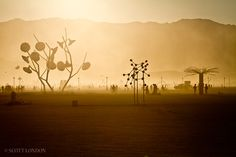 Dusty Afternoon on the Playa, credit to Scott London. Came across this in Burning Man photos- the colour palette, backlighting, dusty-misty feel, eerieness of the art is quite Macbethy