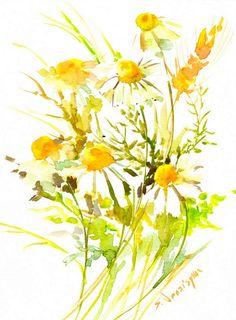chamomiles, original watercolor 12 x 9 in, field flowers, herbs painting, original painting