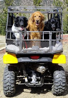 Custom ATV Dog Boxes, available for almost any atv. 4 Wheeler Accessories, Atv Accessories, Honda Pioneer 500, Atv Trailers, Dog Seat, Camo Designs, Dog Cages, Polaris Ranger, Dog Carrier
