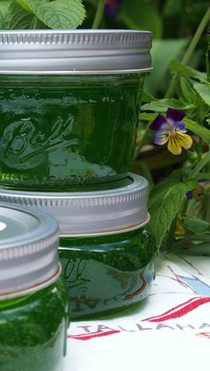 A few years ago I had mint jelly on Lamb Chops for the first time and loved it. But trying to find mint jelly in most grocery stores is nearly impossible. Mint Jelly is mildly sweet and just a little tart, with a wonderful fresh mint flavor. Jelly Recipes, Jam Recipes, Canning Recipes, Chutneys, Jam And Jelly, Home Canning, Green Food Coloring, Fresh Mint Leaves, Vegan Recipes
