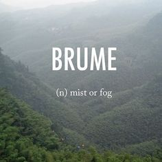 Brume |bro͞om| early 18th century from French via Latin from bruma 'winter' #beautifulwords #wordoftheday #mountains #spring #Korea