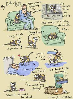 Simon's Cat - Simon's real cat and inspiration, Jess