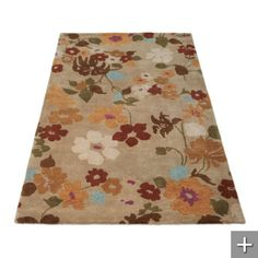 another pretty rug