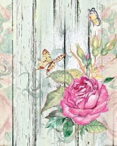 Rose and butterflies.