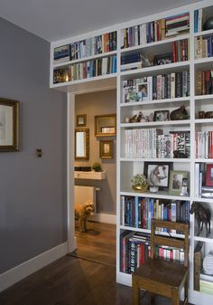 A wall of books and other things