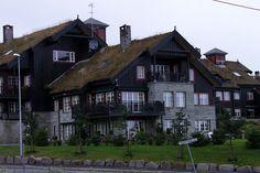 Norwegian roofs