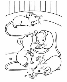 Farm animal coloring page | Mice eating cheese