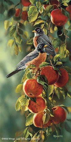 Птички и цветы. Rosemary Millette. Обсуждение на LiveInternet - Российский Сервис Онлайн-Дневников