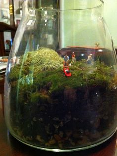 I love it, how cute to see this little ho scale people in a terrarium.
