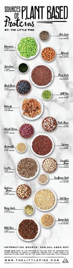 If you are a vegan, you can totally get all your protein needs met by eating a whole food plant-based diet. Many vegan athletes have proved this point, but you need to be smart about where to find out. Thats why this vegan, plant-based protein chart is re Healthy Snacks, Healthy Recipes, Diet Recipes, Diet Tips, Diet Meals, Vegan Protein Snacks, Healthy Nutrition, Healthy Grains, Protein In Food