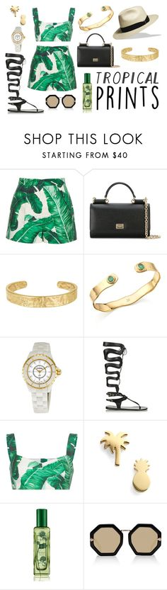 """Tropical prints"" by camiolly ❤ liked on Polyvore featuring Dolce&Gabbana, Sam Edelman, Monica Vinader, Chanel, Ancient Greek Sandals, Seoul Little, Jo Malone, Karen Walker, tropicalprints and hottropics"