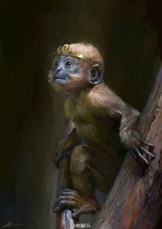Jai Hanuman, Monkey, Boss, Animals, Animales, Monkeys, Animaux, Animal, Animais