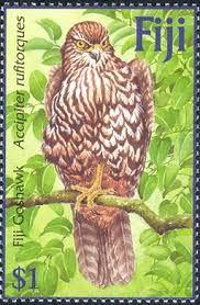 rainforest animal postage stamps pinterest - Google Search