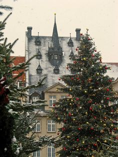 beam me up, Scotty! I'd love to see it -  European Christmas