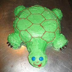 Liam's Birthsday Turtle Birthday Cake