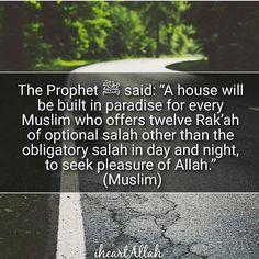 #mosque #revert #ummah #islam #islamic #peace #prayer #proudmuslim #Allah #sabr…