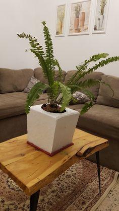 Planter Pots, Table, Furniture, Home Decor, Drawing Rooms, Homemade Home Decor, Mesas, Home Furnishings, Desk
