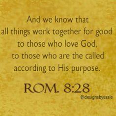 Romans 8:28 Bible