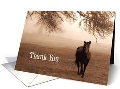 #Thank You for the #Horse Lover Greeting Card. A lovely #photograph in sepia hues taken in the #Sierra foothills of #California.