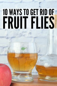 How to Get Rid of Fruit Flies | If you're looking for tips and hacks to help prevent and get rid of fruit flies, this post will teach you how to trap them, and get them out of the house once and for all! Catching fruit flies is a cinch with our DIY traps using apple cider vinegar, dish soap, and fermented fruit, and our DIY alcohol spray is a great natural repellent. Whether in your kitchen or in drain sinks, these home remedies for fruit flies will banish them for good!