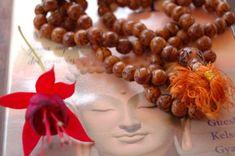 La mejor ofrenda al Guía Espiritual y que deleita a todos los seres iluminados, es nuestra práctica espiritual constante.