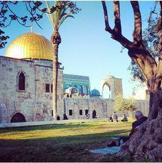 MashaAllah beautiful #DomeOfTheRock in Jerusalem #Palestine.♥♥♥