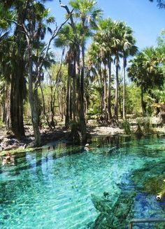Mataranka Hot Springs, Northern Territory, #Australia