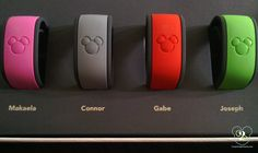detailed description of magic band and fastpass +