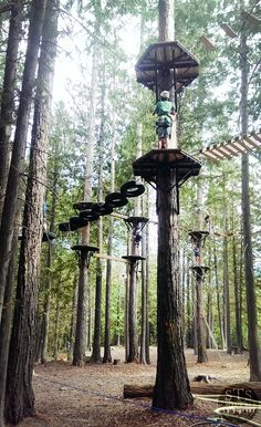 Get up amongst the trees and challenge yourself at the Aerial Park at Fernie Alpine Resort this summer. Climb, swing, and zip line through the course up to off the ground Tree House Plans, Ropes Course, Tree House Designs, Park Playground, Parking Design, Forest Park, Play Houses, Outdoor Activities, Ninja