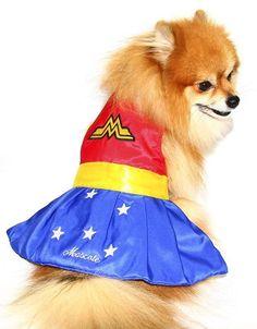 Fantasia de Mulher Maravilha para cachorro, Tam. P Compre na www.amoreseamoras.com.br