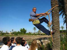 El público asistente al aniversario aprende el oficio de palmerer http://www.museopusol.com/es/actividad/?id=86&cat=10&dat=11%202014
