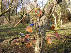 For our November Nature Tots we were using chalk paint to decorate our leaves and peg them back on the trees!