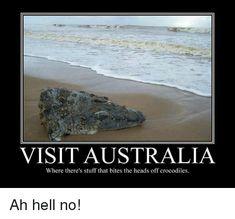 Image result for australia memes