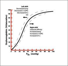 Oxygen dissociation curve
