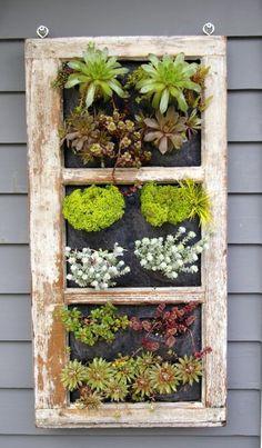 Upcycled window planter